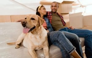 10 Tips For Moving With Pets 5Fb53E7D4B7C2